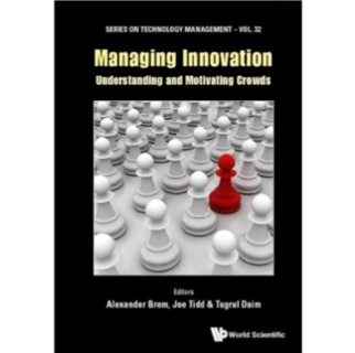 Managing Innovation – Understanding and Motivating Crowds